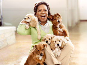 200906-omag-oprah-puppies-290x218